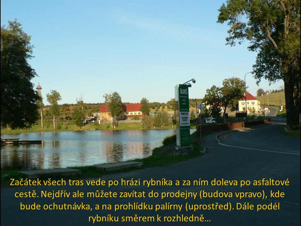 Začátek všech tras vede po hrázi rybníka a za ním doleva po asfaltové cestě.