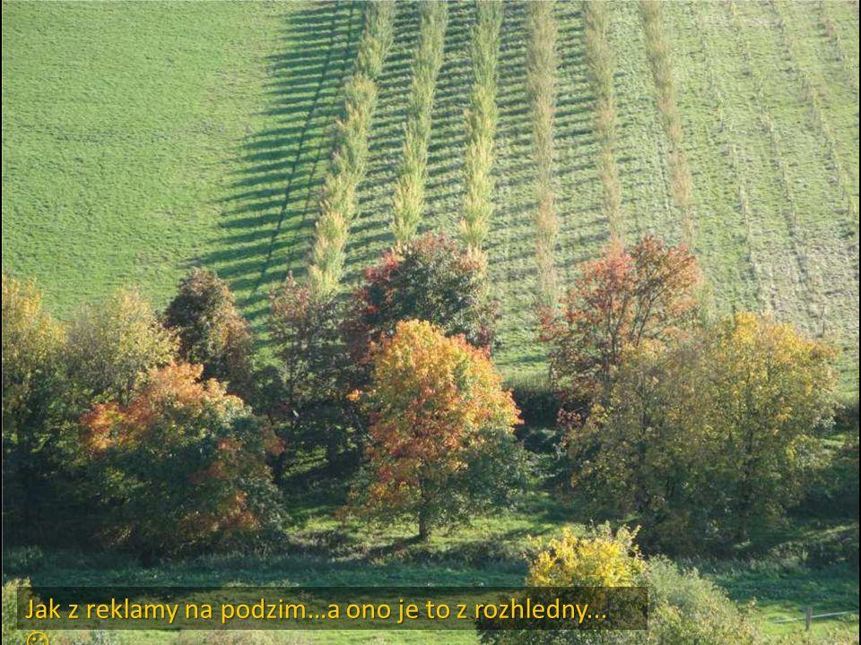 Jak z reklamy na podzim…a ono je to z rozhledny...