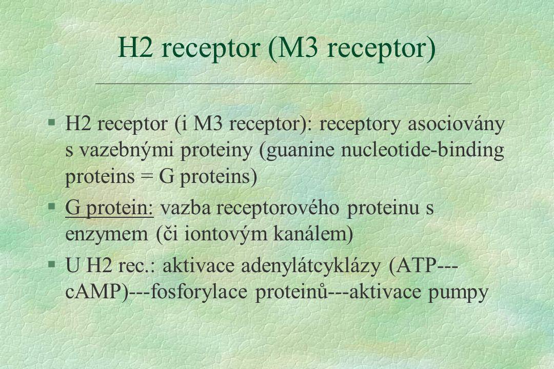 §H2 receptor (i M3 receptor): receptory asociovány s vazebnými proteiny (guanine nucleotide-binding proteins = G proteins) §G protein: vazba receptorového proteinu s enzymem (či iontovým kanálem) §U H2 rec.: aktivace adenylátcyklázy (ATP--- cAMP)---fosforylace proteinů---aktivace pumpy H2 receptor (M3 receptor)