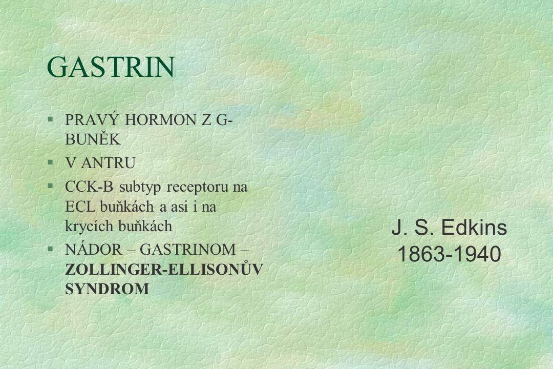 GASTRIN §PRAVÝ HORMON Z G- BUNĚK §V ANTRU §CCK-B subtyp receptoru na ECL buňkách a asi i na krycích buňkách §NÁDOR – GASTRINOM – ZOLLINGER-ELLISONŮV SYNDROM J.