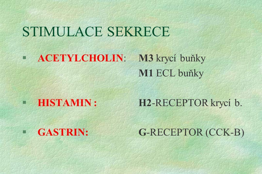 STIMULACE SEKRECE §ACETYLCHOLIN: M3 krycí buňky M1 ECL buňky §HISTAMIN : H2-RECEPTOR krycí b. §GASTRIN:G-RECEPTOR (CCK-B)