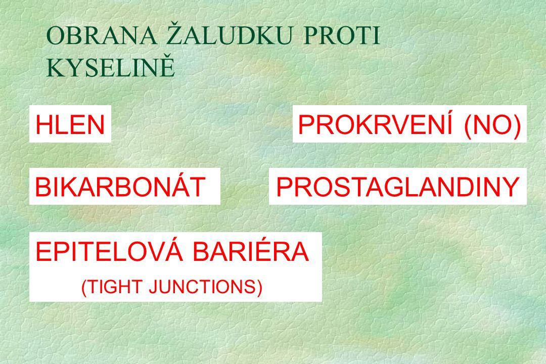 OBRANA ŽALUDKU PROTI KYSELINĚ HLEN BIKARBONÁT EPITELOVÁ BARIÉRA (TIGHT JUNCTIONS) PROKRVENÍ (NO) PROSTAGLANDINY