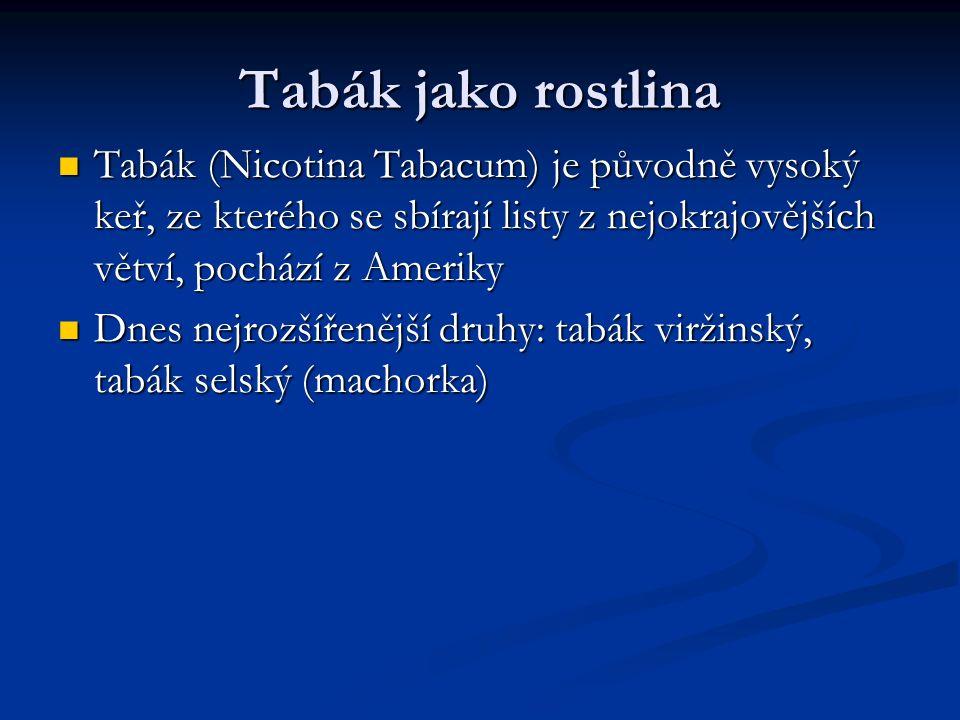 Tabák jako rostlina Tabák (Nicotina Tabacum) je původně vysoký keř, ze kterého se sbírají listy z nejokrajovějších větví, pochází z Ameriky Tabák (Nicotina Tabacum) je původně vysoký keř, ze kterého se sbírají listy z nejokrajovějších větví, pochází z Ameriky Dnes nejrozšířenější druhy: tabák viržinský, tabák selský (machorka) Dnes nejrozšířenější druhy: tabák viržinský, tabák selský (machorka)