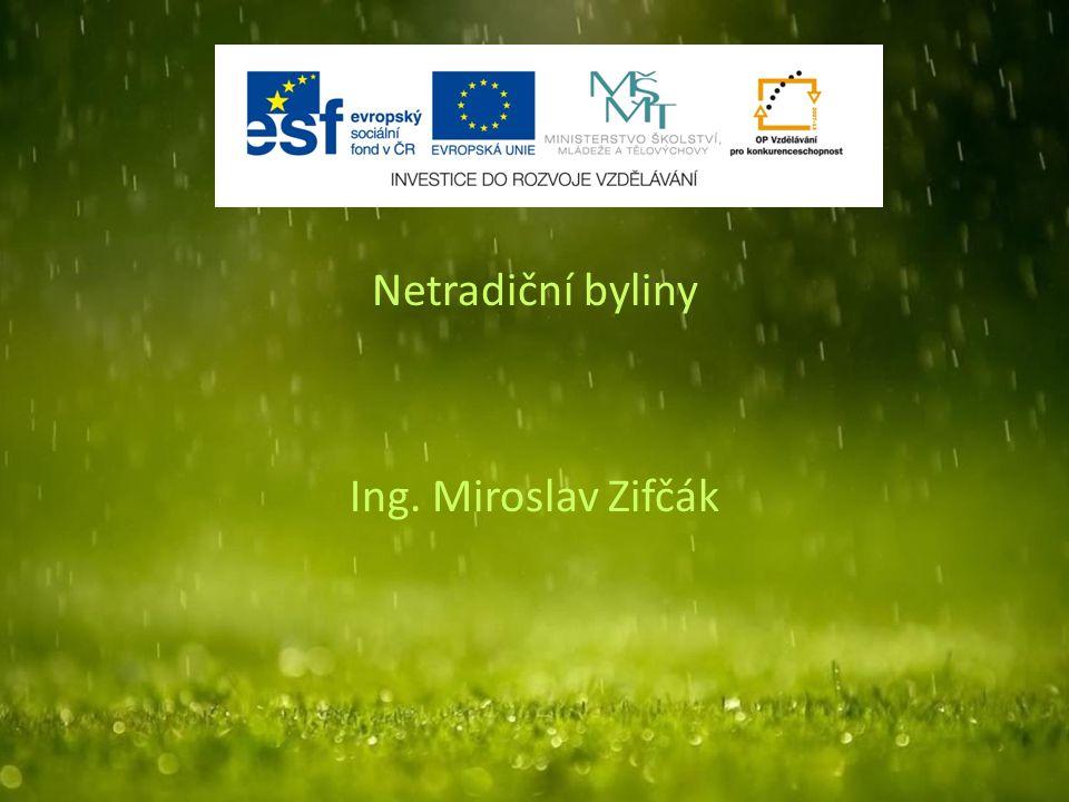 Netradiční byliny Ing. Miroslav Zifčák