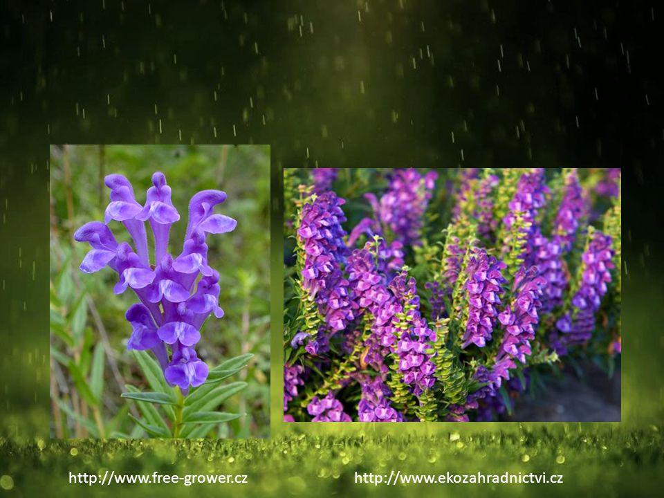 http://www.free-grower.czhttp://www.ekozahradnictvi.cz