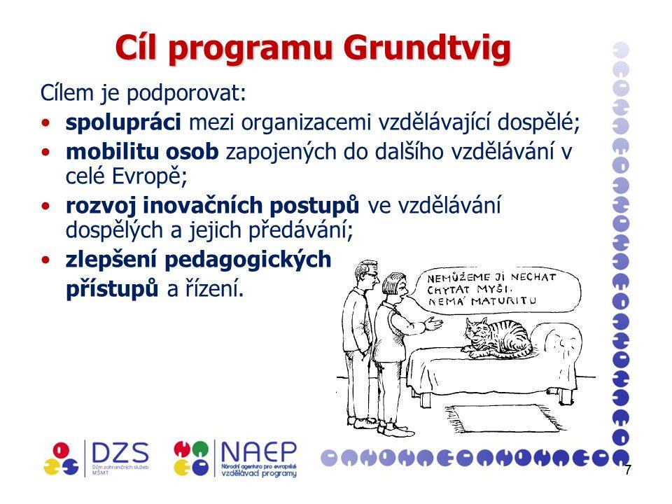 77 Cíl programu Grundtvig Cílem je podporovat: spolupráci mezi organizacemi vzdělávající dospělé; mobilitu osob zapojených do dalšího vzdělávání v celé Evropě; rozvoj inovačních postupů ve vzdělávání dospělých a jejich předávání; zlepšení pedagogických přístupů a řízení.