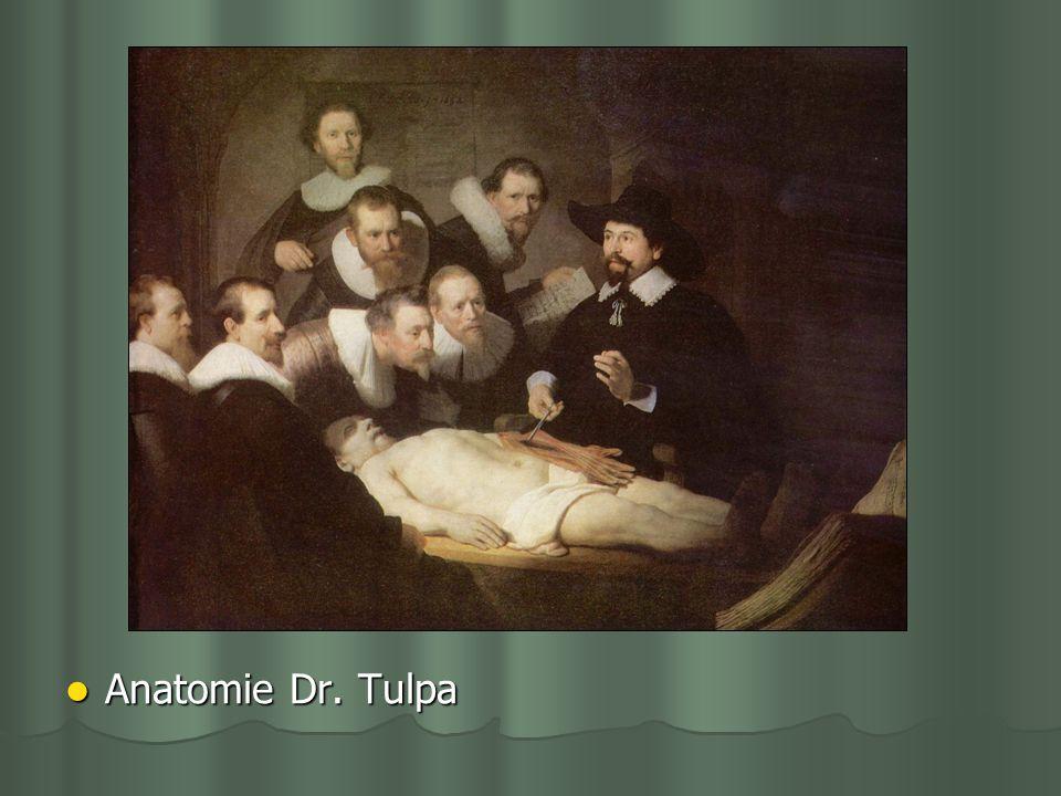Anatomie Dr. Tulpa Anatomie Dr. Tulpa