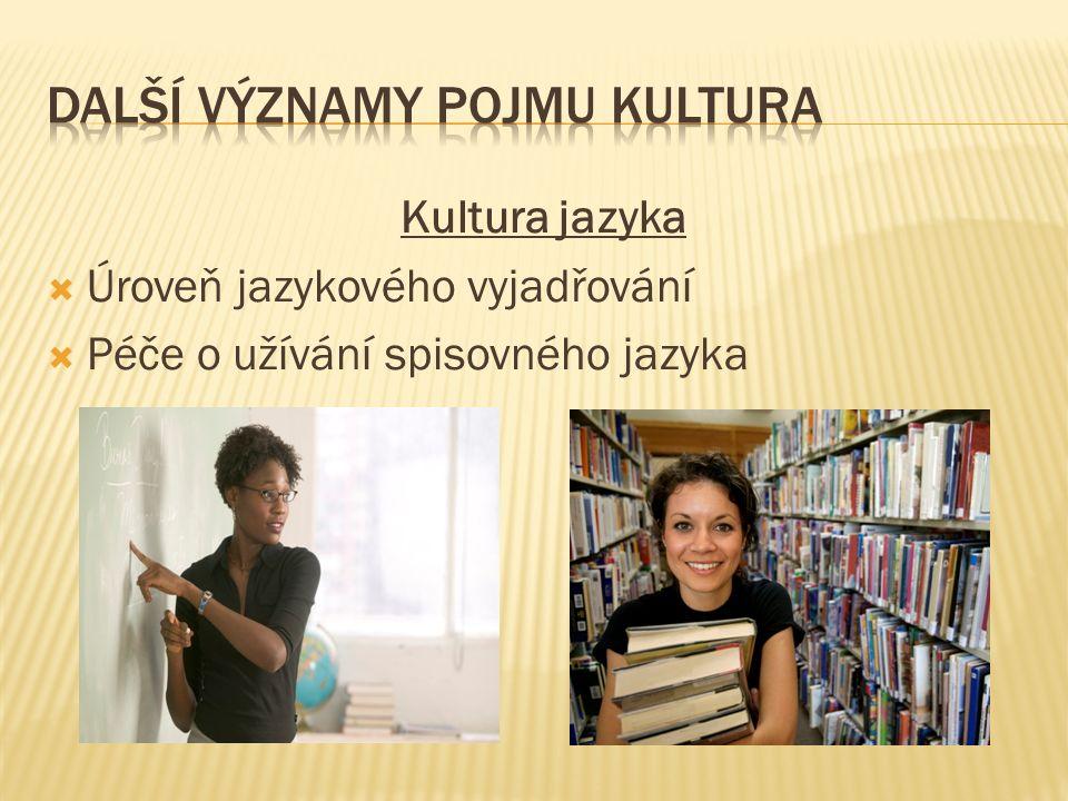 Kultura jazyka  Úroveň jazykového vyjadřování  Péče o užívání spisovného jazyka