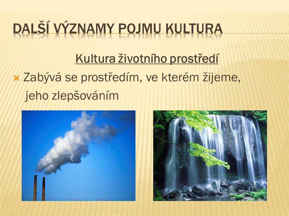 Kultura životního prostředí  Zabývá se prostředím, ve kterém žijeme, jeho zlepšováním