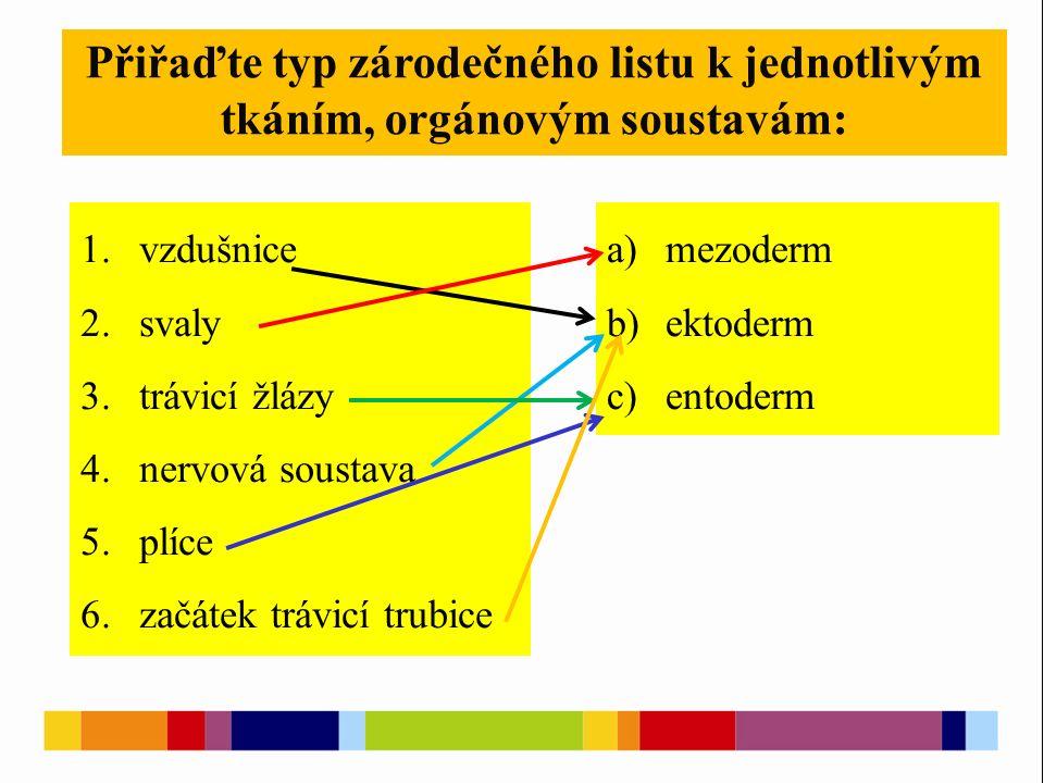 Přiřaďte typ zárodečného listu k jednotlivým tkáním, orgánovým soustavám: 1.vzdušnice 2.svaly 3.trávicí žlázy 4.nervová soustava 5.plíce 6.začátek trávicí trubice a)mezoderm b)ektoderm c)entoderm