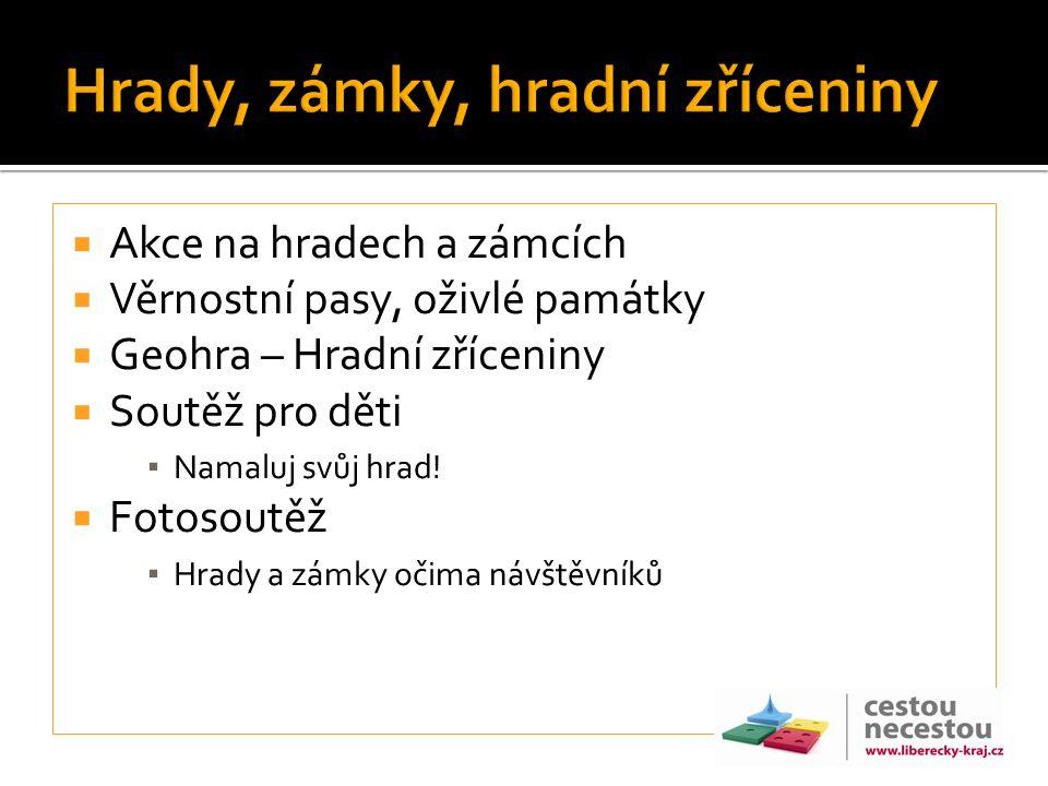  Propojení různých aktérů– síťování podnikatelů a organizací (ČD, Severočeské muzeum, atd)  Fotosoutěž, soutěž pro děti  Výstavy, DOD, akce  Vrchol – 21.9.2013 – Oslavy Ještědu