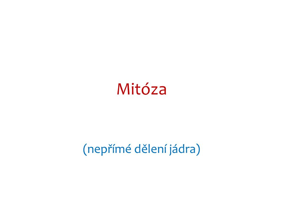 http://cantorsbiologyblog.blogspot.cz/2011/02/mitosis-somatic-cell-division.html