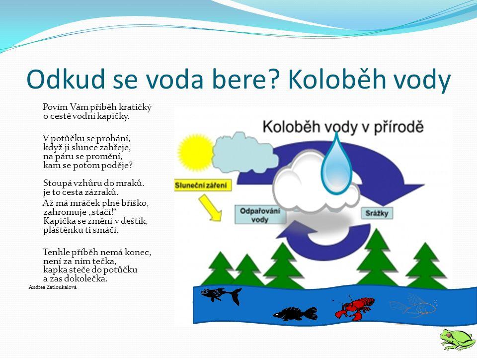 """Odměna pro šikovné dětičky Hry http://www.tajemstvivody.cz/chytani.htm http://www.vodnistrazci.cz/hry/najdi-10-rozdilu/ Film – """"Cesta vody http://www.vodnistrazci.cz//k-vytazeni/k-vytazeni1/"""