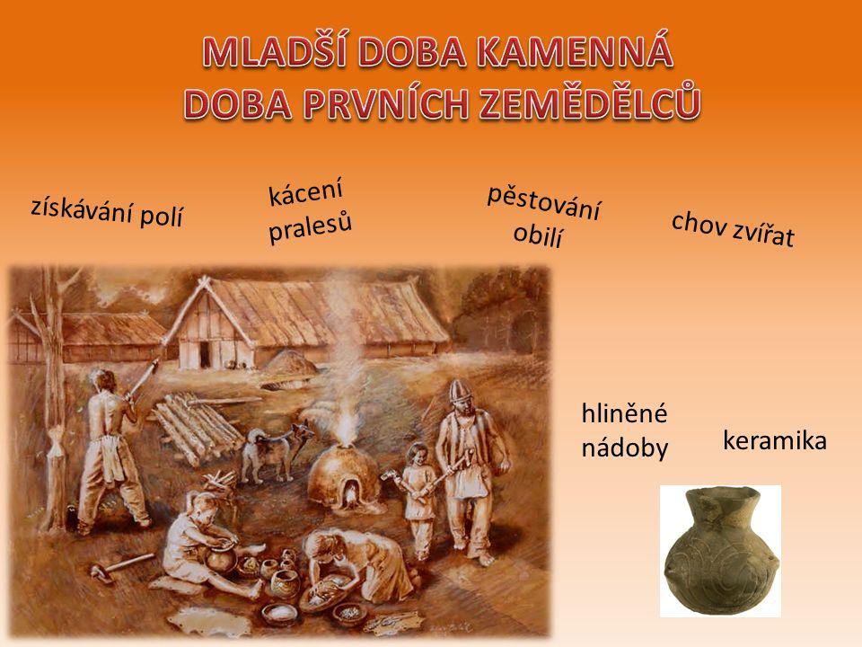získávání polí kácení pralesů pěstování obilí chov zvířat hliněné nádoby keramika
