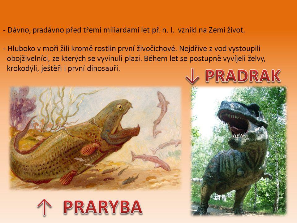 - Dávno, pradávno před třemi miliardami let př. n.