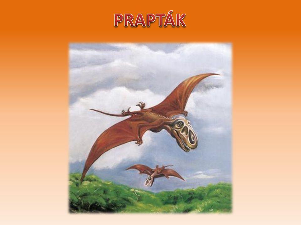 - Zajímá tě, kdo z dinosaurů byl nejtěžší nebo nejmenší ??? Vyprav se na výlet Dinoparku.