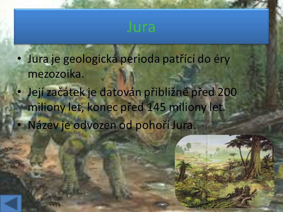 Trias je geologická perioda druhohorního období. Trval od zhruba 251 do 199,6 milionů let.