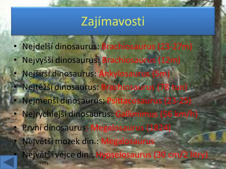 Coelurosauria Prosauropoda Ornithopoda (Hadrosauři) Ornithopoda Sauropodia Deinonychosauria Stegosauria Ankylosauria Ceratopsia Carnosauria Segnosauria Ornithomimosauria
