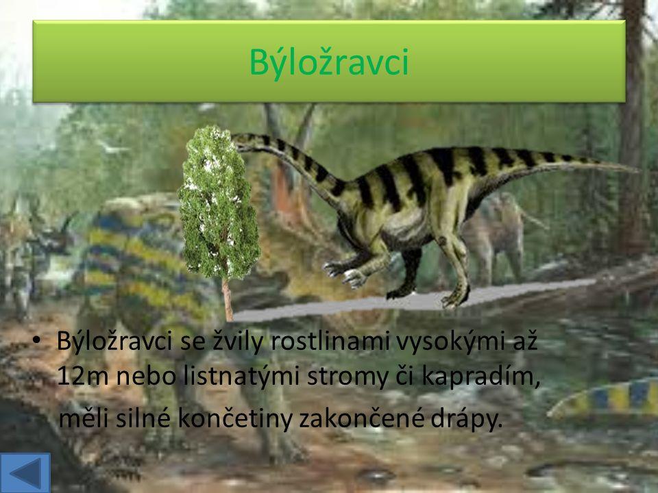 Býložravci se žvily rostlinami vysokými až 12m nebo listnatými stromy či kapradím, měli silné končetiny zakončené drápy.