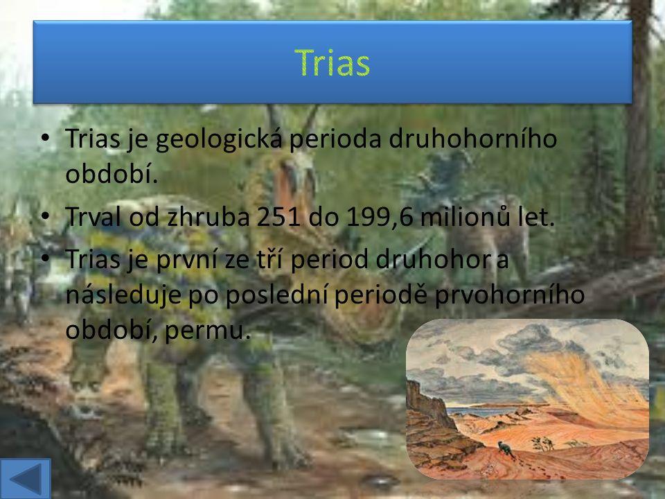 Trias je geologická perioda druhohorního období.Trval od zhruba 251 do 199,6 milionů let.