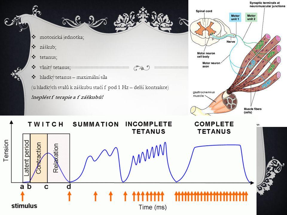  motorická jednotka;  záškub;  tetanus;  vlnitý tetanus;  hladký tetanus – maximální síla (u hladkých svalů k záškubu stačí f pod 1 Hz – delší kontrakce) !neplést f terapie a f záškubů!