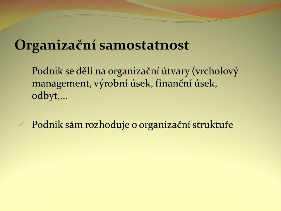 Podnik se dělí na organizační útvary (vrcholový management, výrobní úsek, finanční úsek, odbyt,… Podnik sám rozhoduje o organizační struktuře