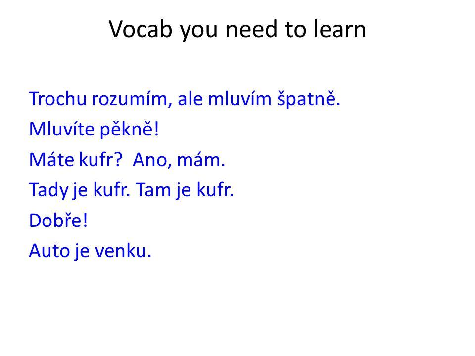 Vocab you need to learn Trochu rozumím, ale mluvím špatně.