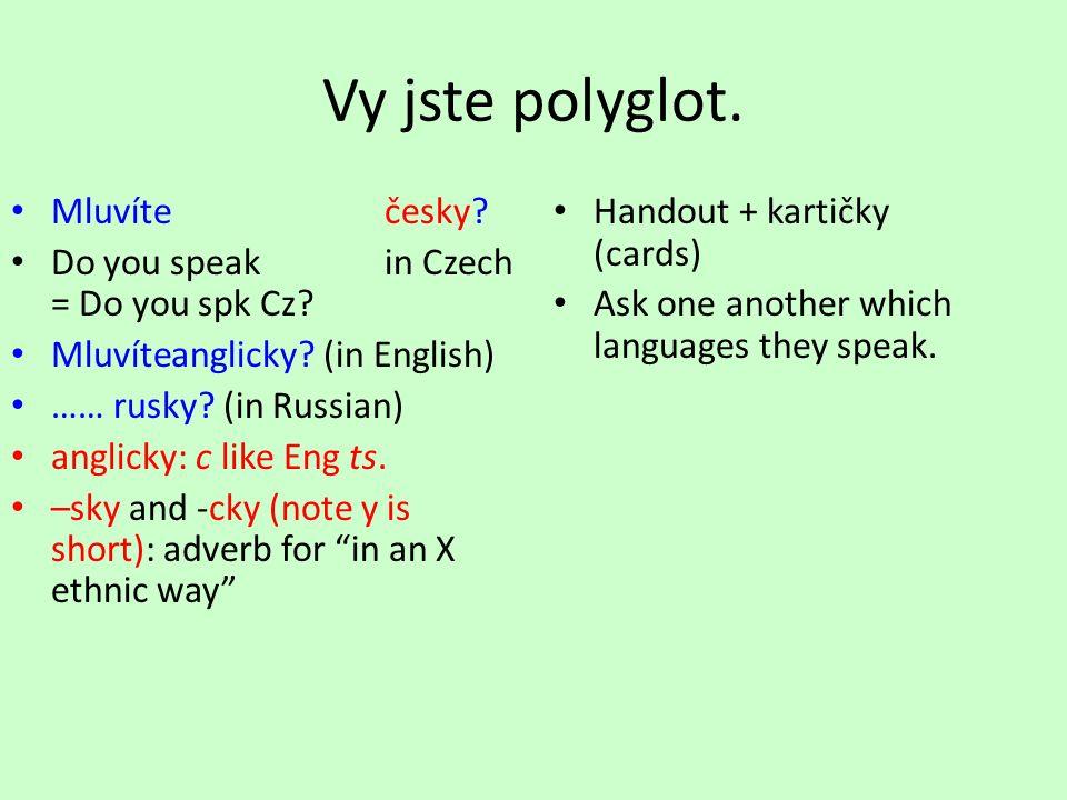 Vy jste polyglot. Mluvíte česky. Do you speakin Czech = Do you spk Cz.
