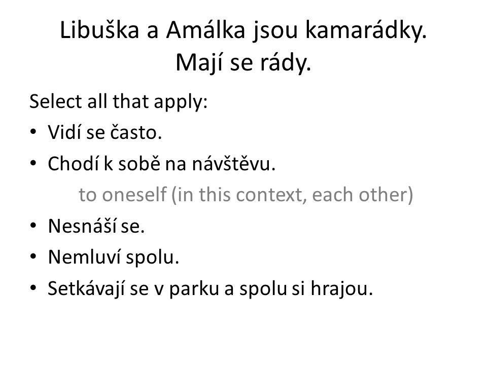 Libuška a Amálka jsou kamarádky. Mají se rády. Select all that apply: Vidí se často.
