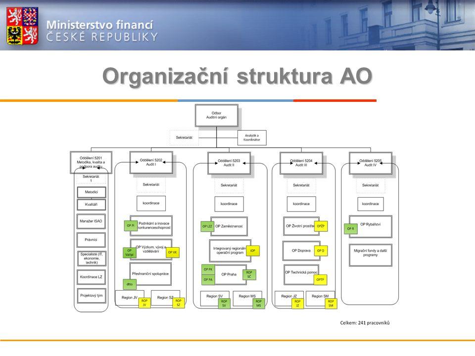 Organizační struktura AO