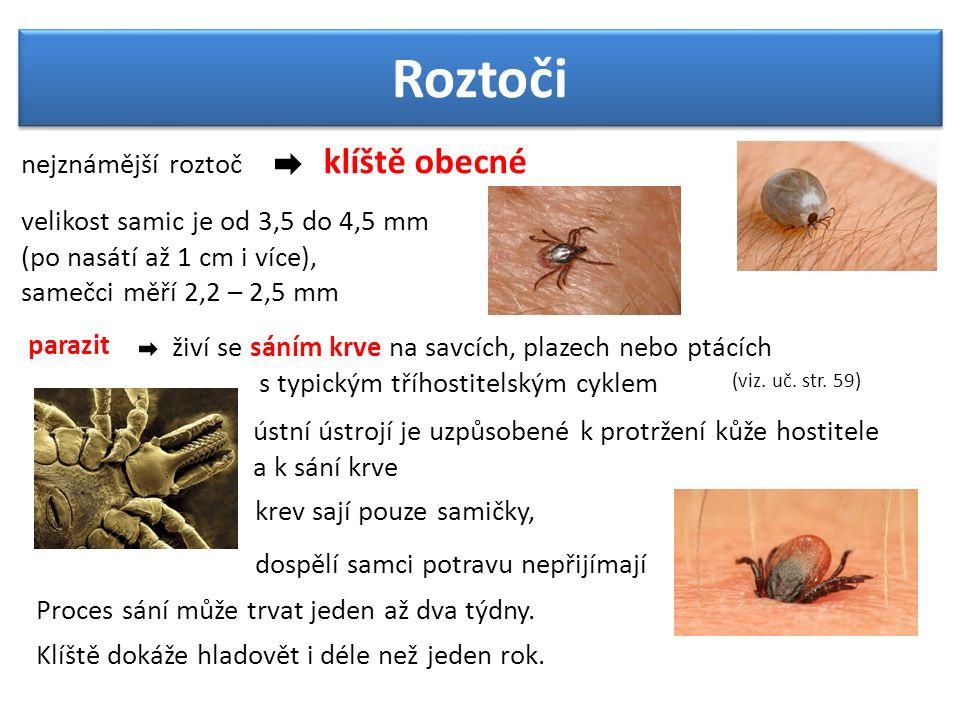 Roztoči nejznámější roztoč klíště obecné parazit velikost samic je od 3,5 do 4,5 mm (po nasátí až 1 cm i více), samečci měří 2,2 – 2,5 mm (viz. uč. st