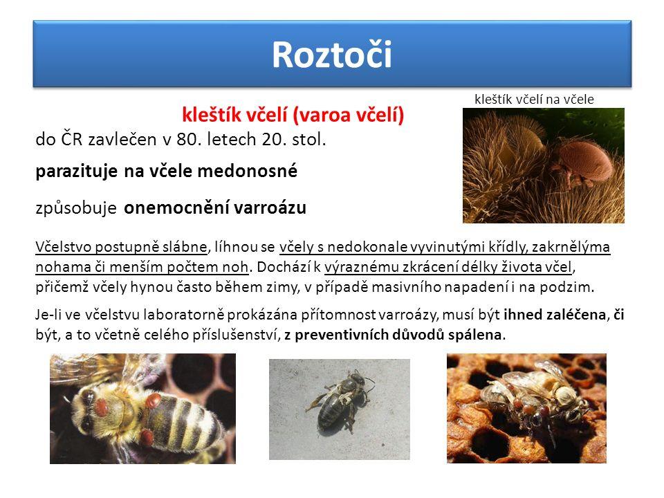 Roztoči kleštík včelí (varoa včelí) do ČR zavlečen v 80.