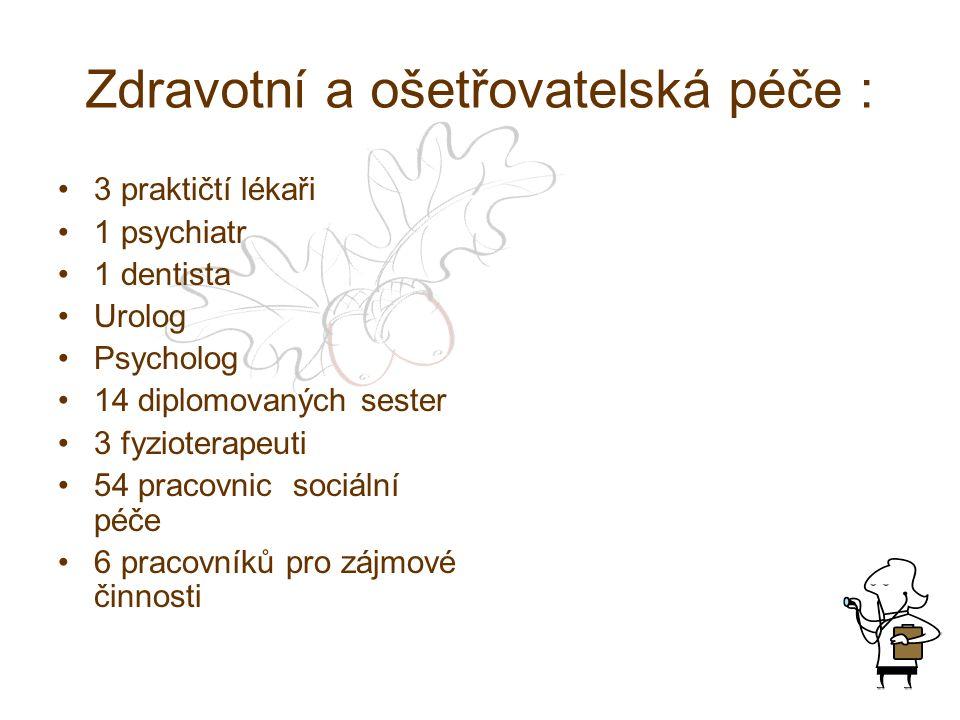 Zdravotní a ošetřovatelská péče : 3 praktičtí lékaři 1 psychiatr 1 dentista Urolog Psycholog 14 diplomovaných sester 3 fyzioterapeuti 54 pracovnic sociální péče 6 pracovníků pro zájmové činnosti