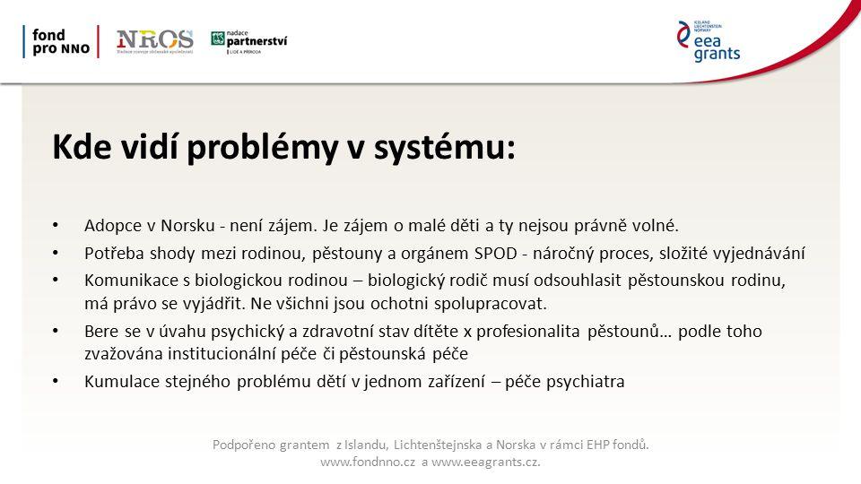 Kde vidí problémy v systému: Adopce v Norsku - není zájem.