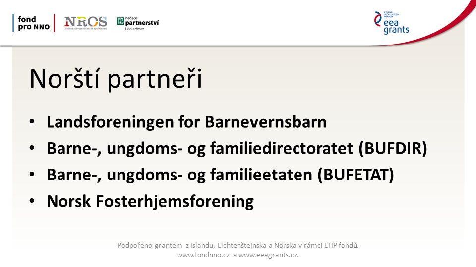Kde vidí problémy v systému: Financování v systému Asociace je finančně závislá na příspěvcích členů a na prodeji/předplatném odborných publikací, část přispívá BUFDIR z peněz vybraných z hazardu Potřeba včasné intervence – práce s biologickou rodinou Podpořeno grantem z Islandu, Lichtenštejnska a Norska v rámci EHP fondů.