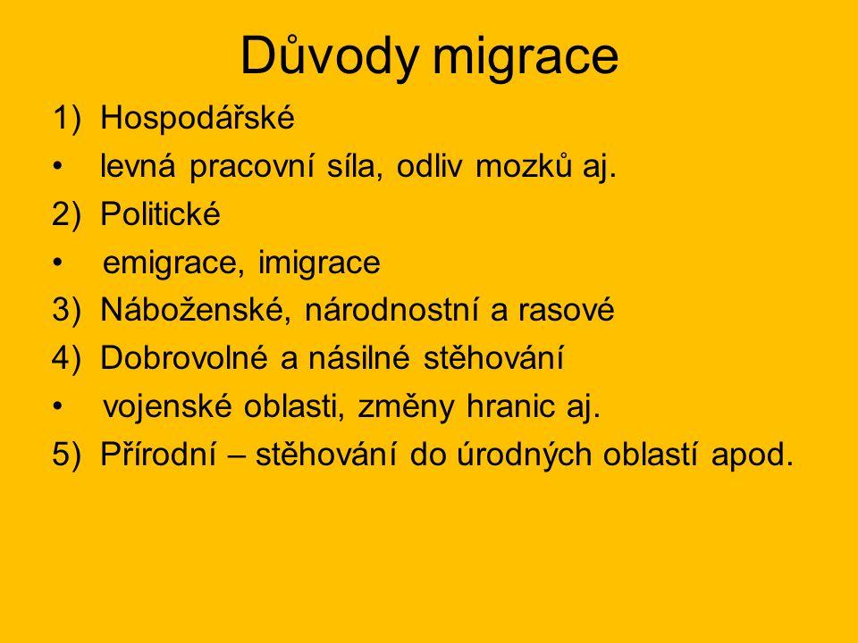 Důvody migrace 1)Hospodářské levná pracovní síla, odliv mozků aj.