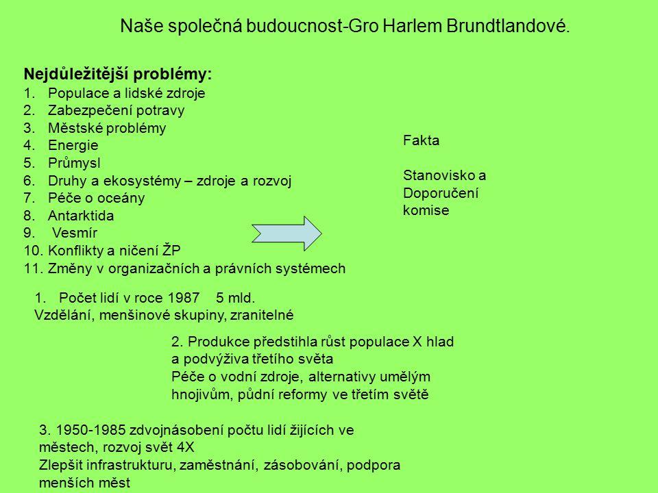 Naše společná budoucnost-Gro Harlem Brundtlandové.