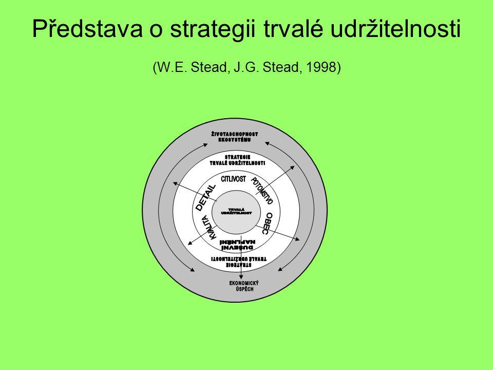 Představa o strategii trvalé udržitelnosti (W.E. Stead, J.G. Stead, 1998)