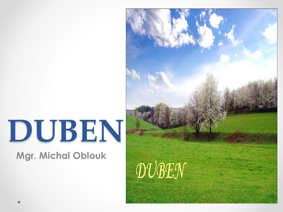DUBEN Mgr. Michal Oblouk