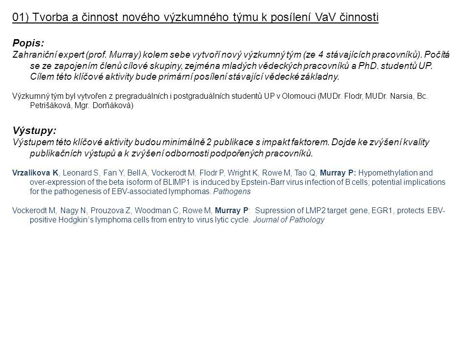 01) Tvorba a činnost nového výzkumného týmu k posílení VaV činnosti Popis: Zahraniční expert (prof.