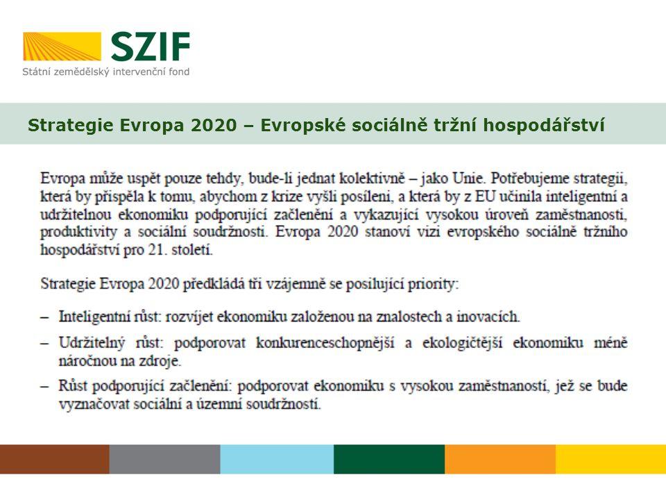Strategie Evropa 2020 – Evropské sociálně tržní hospodářství