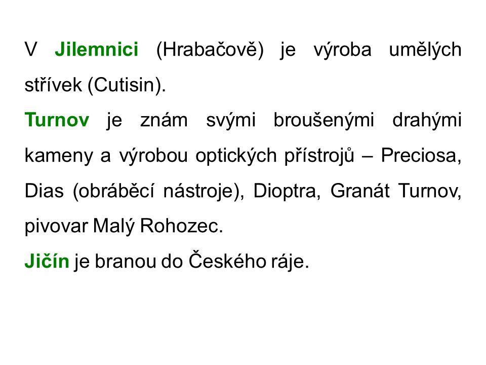 V Jilemnici (Hrabačově) je výroba umělých střívek (Cutisin).