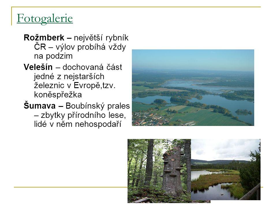Fotogalerie Rožmberk – největší rybník ČR – výlov probíhá vždy na podzim Velešín – dochovaná část jedné z nejstarších železnic v Evropě,tzv.