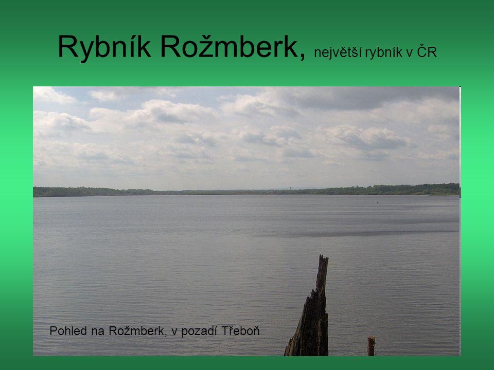 Rybník Rožmberk, největší rybník v ČR Pohled na Rožmberk, v pozadí Třeboň