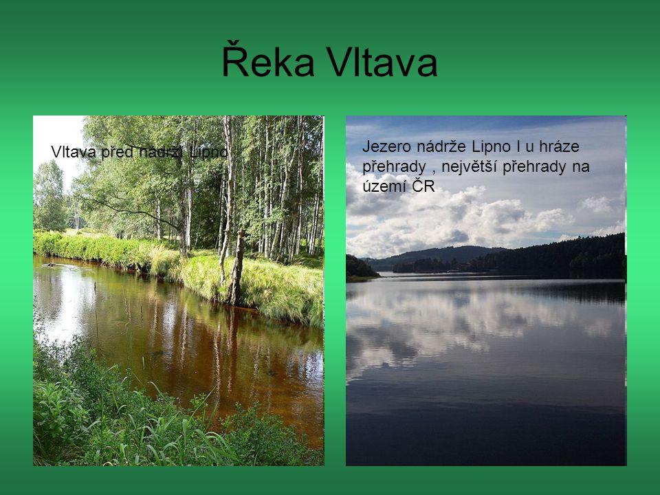 Řeka Vltava Vltava před nádrží Lipno Jezero nádrže Lipno I u hráze přehrady, největší přehrady na území ČR