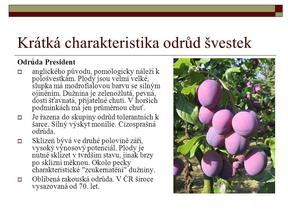 Krátká charakteristika odrůd švestek Odrůda President  anglického původu, pomologicky náleží k pološvestkám.