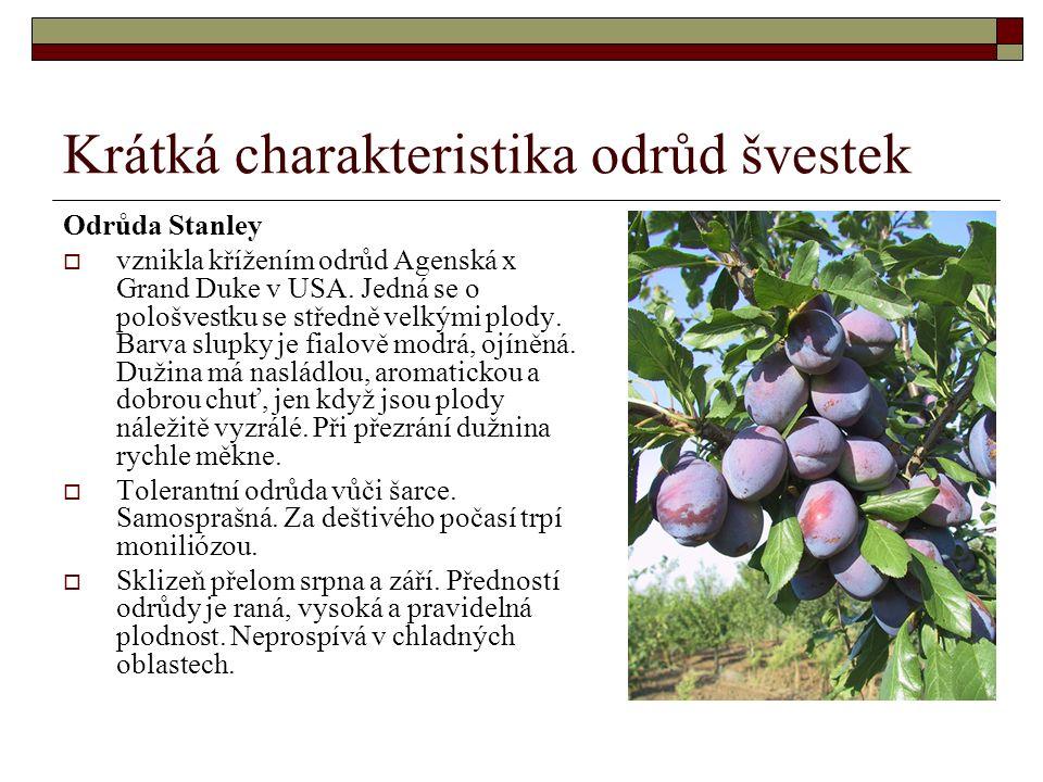 Krátká charakteristika odrůd švestek Odrůda Stanley  vznikla křížením odrůd Agenská x Grand Duke v USA.