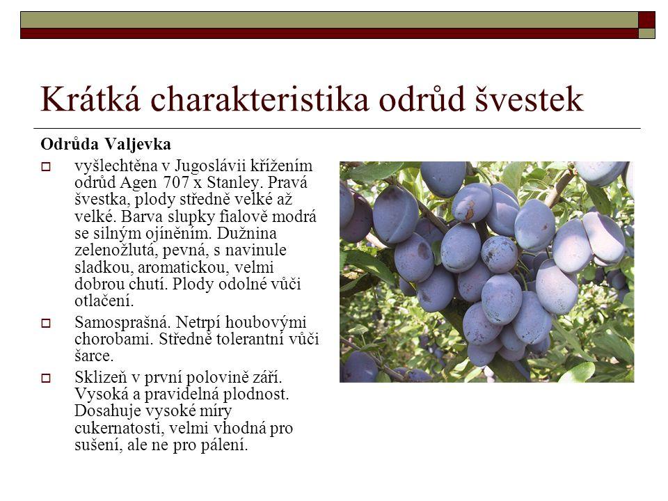 Krátká charakteristika odrůd švestek Odrůda Valjevka  vyšlechtěna v Jugoslávii křížením odrůd Agen 707 x Stanley.