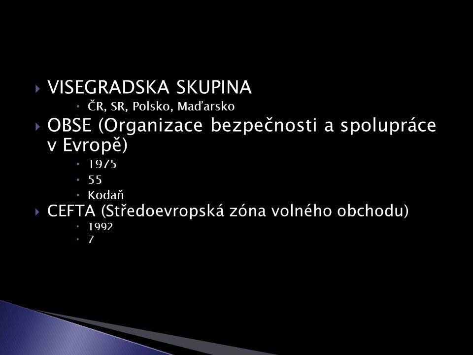 VISEGRADSKA SKUPINA  ČR, SR, Polsko, Maďarsko  OBSE (Organizace bezpečnosti a spolupráce v Evropě)  1975  55  Kodaň  CEFTA (Středoevropská zóna volného obchodu)  1992  7