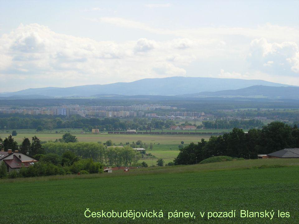 Českobudějovická pánev, v pozadí Blanský les